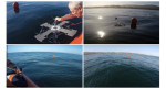 US Navy's solar drone takes off and lands on water